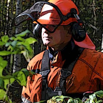 Metsäradio.: Metsäalan yrittäjien asema on vankistunut