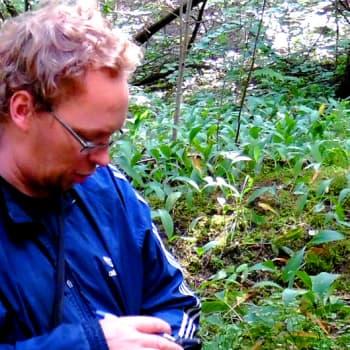 Metsäradio.: Metsien luontoarvoja