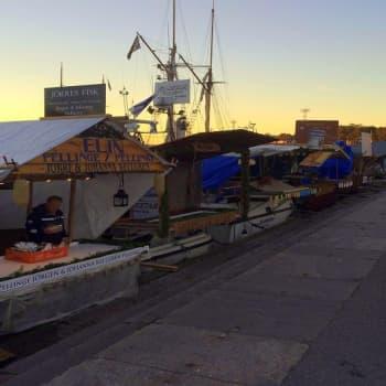 YLE Helsinki: Kotkan merikarhut viettävät Silakkamarkkinoilla koko viikon veneessä