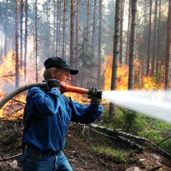 Metsäradio.: Metsäpalo uhkaa kesällä