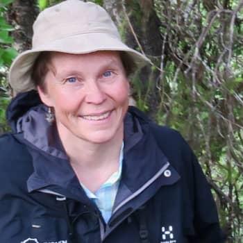 Metsäradio.: Oulangan kansallispuiston kesä lumoaa retkeilijän