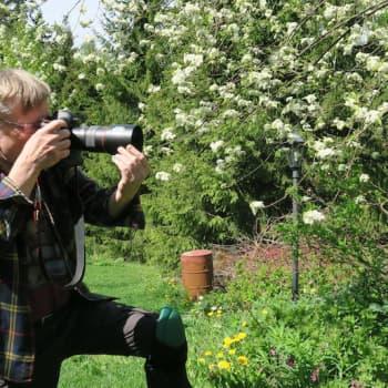 Luontoretki.: Ötököitä kuvaamassa