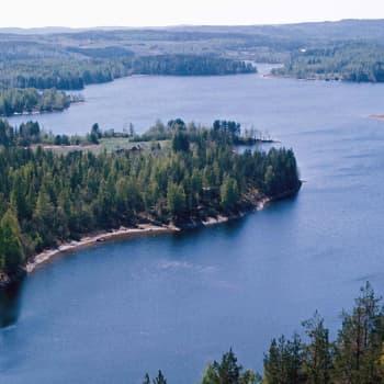 Metsäradio.: Raija ja Ossi Tuuliaisen säätiö on monessa mukana
