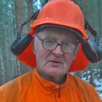 Metsäradio.: Metsuri Heikki Uitus tekee ansiotöitä 80-vuotiaana