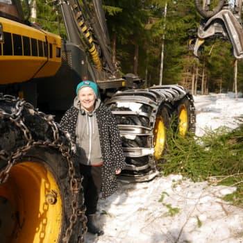 Jokapaikan Reetta: Hakkuutyömaalla Kuopion Soisalossa