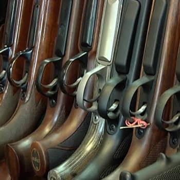 Roman Schatzin Maamme-kirja: Onko Suomessa liikaa aseita?