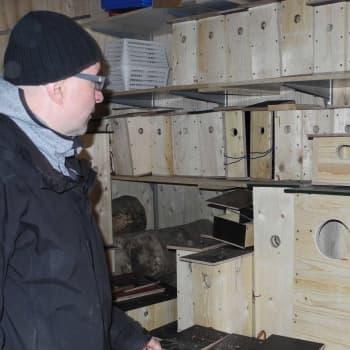 Metsäradio.: Heinolan lintutarhan pönttövarastolla