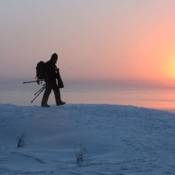 Minna Pyykön maailma: Suomalaiset ovat luontokuvaajakansaa
