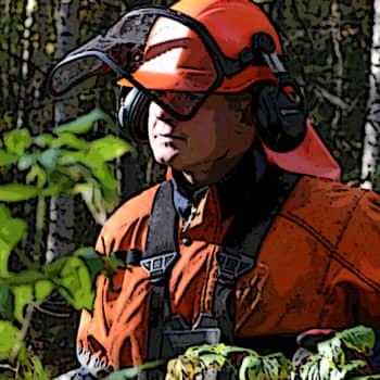 Metsäradio.: Metsäalan työhyvinvointi