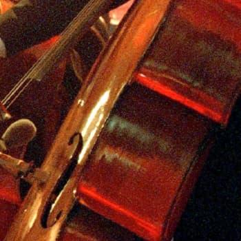 Matalaääninen kontrabasso on terapeuttinen soitin