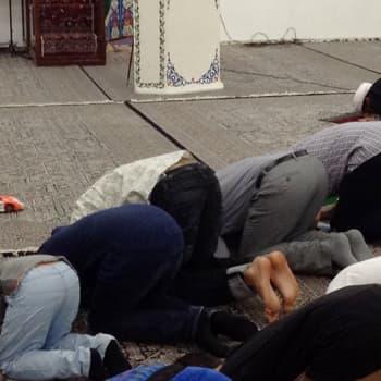 Maailmanpolitiikan arkipäivää: Shiiojen ja sunnien kiista tuntuu myös Suomessa