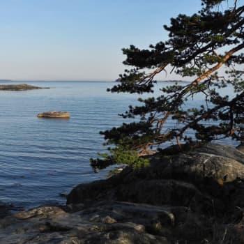 Luonto-Suomi.: Luonto-Suomen Itämeri-ilta