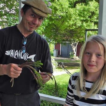 Luonto-Suomi.: Luonto-Suomen nokikokit