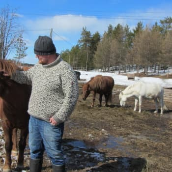 Jokapaikan Reetta: Raatesalmen tilalla Kuusamossa