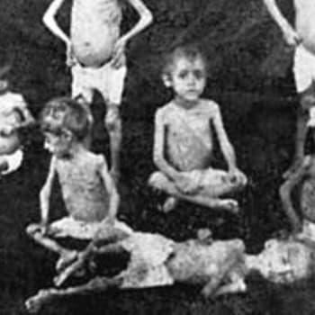 Ajankohtainen Ykkönen: Armenialaisten kiistelty kansanmurha