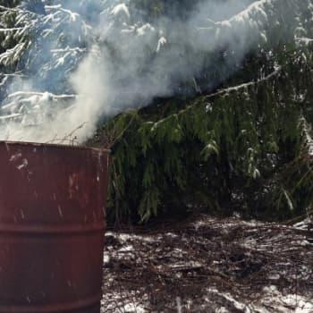 Luontoretki.: Risuja polttamassa