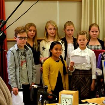 Sari Helin: Joulumaa sielunrauhan valtakuntana