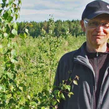 Metsäradio.: Visataimikossa Mouhijärvellä