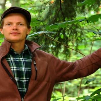 YLE Helsinki: Urbaani periferia on bloggaajan paratiisi