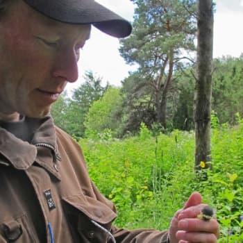 Minna Pyykön maailma: Luontoharrastaja Jouni Tittosen matkassa
