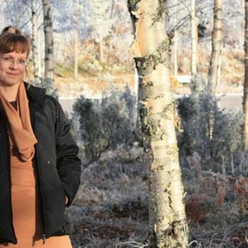 Viikon kirja: Sari Pöyliö:Pölynimurikauppias