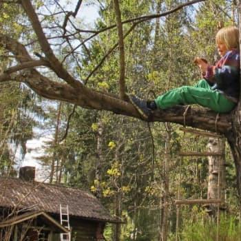 Minna Pyykön maailma: Luonto ja terveys