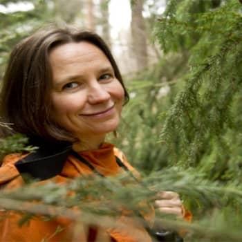 Yövieras: Minna Pyykkö on luonnossa kotonaan