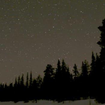 Luontoretki.: Miljardin tähden alla