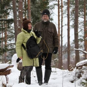 Minna Pyykön maailma: Heikki Willamon talvi hirviperheen ulkojäsenenä