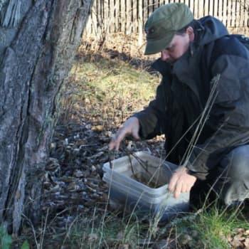 Luontoretki.: Maaperän selkärangattomia tutkimassa