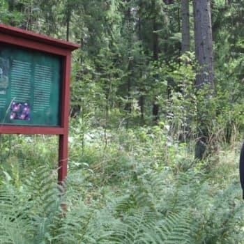 Luontoretki.: Paasilinnan luontopolulla