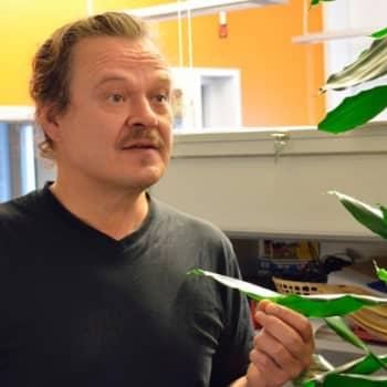 Yövieras: Juha Lehti on tarinankertoja