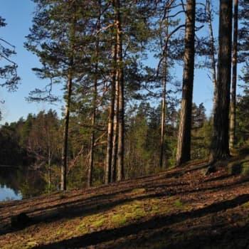Luontoretki.: Sudenkalliolla Aleksis Kiven maisemissa