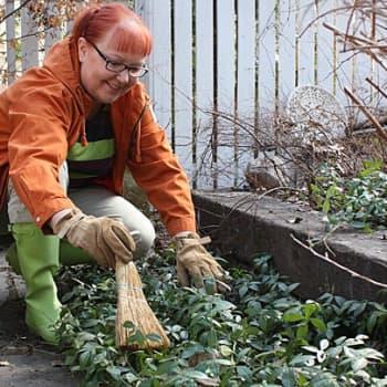 Puutarhan vuosi: Vaihtoehto nurmikolle