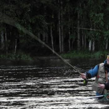 Luonto-Suomi.: Luonto-Suomen Kalastusilta