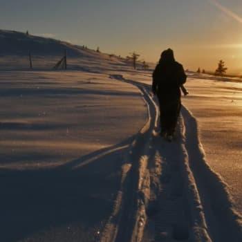 Luontoretki.: Autiotupien ympäristö 12.2.2012