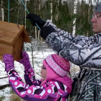 Luonto-Suomi.: Eve Rissanen ruokkii lintuja 1.2.2012
