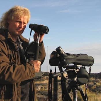 Minna Pyykön maailma: Miten lintuharrastus aloitetaan? 7.1.2012