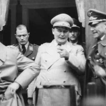 Prof. Rolf Nevanlinnan Göring-esitelmä uudelleen luettuna