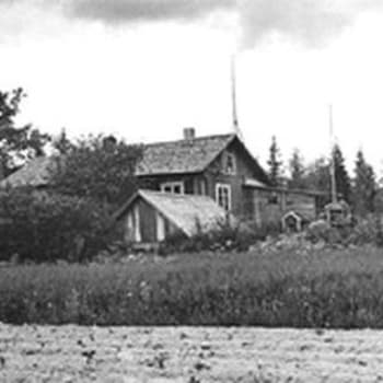 Sillanpään maisema (1958)