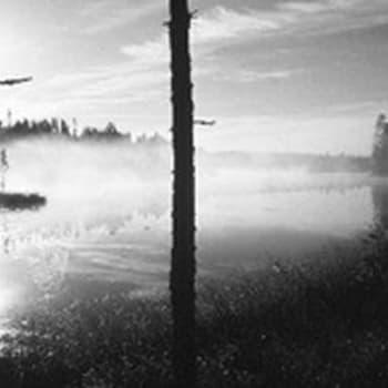 Ristiretkeläisten jäljillä Lounais-Suomessa (1955)