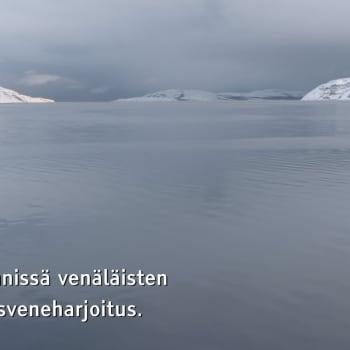 Minna Pyykön maailma: Eläinten arkkitehtuuri 9.7.11