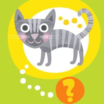 Oletko sinä kissa?