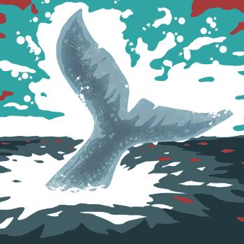 Valkoinen valas