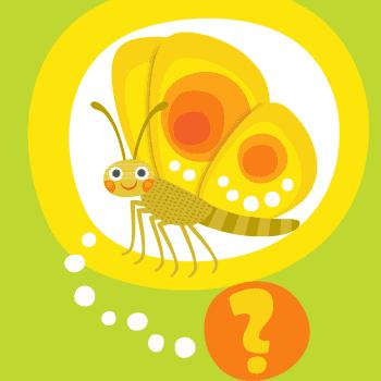 Oletko sinä perhonen?