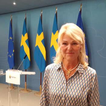 """Svensk minister: """"Vi kan inte hålla på och stänga och öppna gränser varannan vecka"""""""