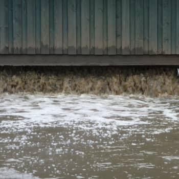 Små vattenreningsverk klarar inte av industrins spillvatten