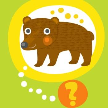 Oletko sinä karhu?