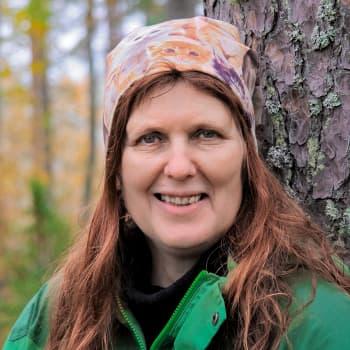 Työkaluja elpymiseen: Metsäterapian harjoituksilla voi avartaa näköaloja, vähentää kireyttä ja kuormitusta