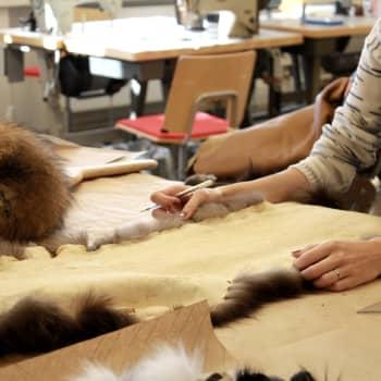 Luonnonturkisyhdistys edistää kuolleiden eläinten turkisten käyttöä